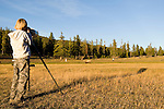 A boy photographs a bull elk in Yellowstone National Park Wyoming, USA, September 30, 2007.  The boy was standing near a group of photographers, one of whom loaned the boy his 600-mm lens and then took this photo.  Photo by Gus Curtis.