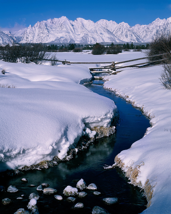 Winter scene along a stream below the Teton Range; Grand Teton National Park, WY