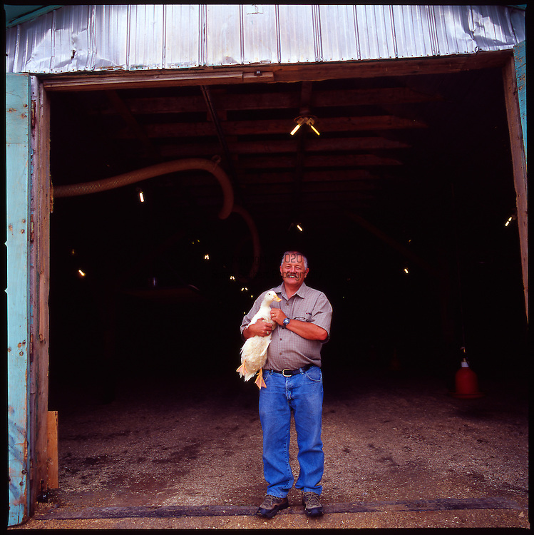 Renfred Tracey holds one of the breeding ducks at the Lac Brome Duck Farm in Lac Brome, Quebec, Canada, http://www.bromelakeducks.com/