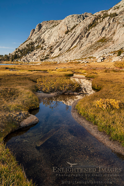 Stream through alpine meadow near Vogelsang Lake, Yosemite National Park, California