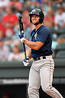 Designated hitter Tim Tebow (15) of the Columbia Fireflies bats in a game against the Greenville Drive on Thursday, June 15, 2017, at Fluor Field at the West End in Greenville, South Carolina. Columbia won, 7-2. (Tom Priddy/Four Seam Images)