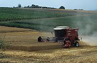 Threshing of wheat