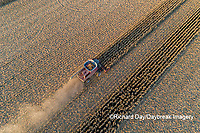 63801-12406 Harvesting corn in fall-aerial  Marion Co. IL