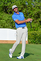 Dustin Johnson (USA) watches his tee shot on 17 during round 7 of the World Golf Championships, Dell Technologies Match Play, Austin Country Club, Austin, Texas, USA. 3/26/2017.<br /> Picture: Golffile | Ken Murray<br /> <br /> <br /> All photo usage must carry mandatory copyright credit (&copy; Golffile | Ken Murray)