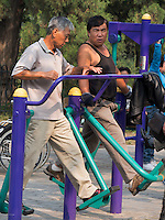 Gymnastik im Himmelstempel Park, Peking, China, Asien<br /> Exercises in the temple of Heaven park, Beijing, China, Asia