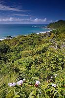 The Pacific Ocean from Manuel Antonio, Costa Rica