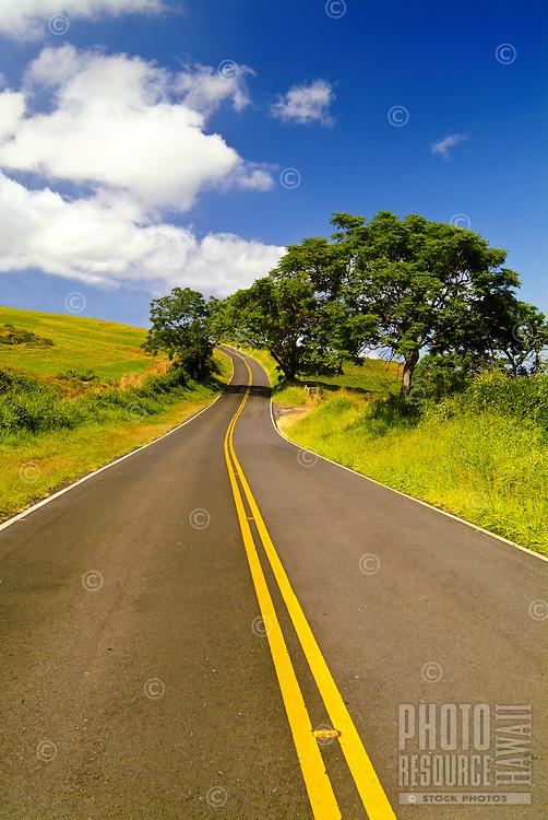 Kula Highway on the slopes of dormant Haleakala volcano, Upcountry Maui. Concepts: freedom, exploring, possibilities, endless