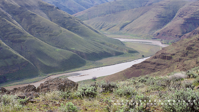 The rugged John Day River Canyon in the afternoon light of spring.