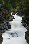 Loves falls at high water on the North fork of the Yuba River along highway 49 near the Sierra Buttes in Northern California, USA.