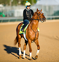 04-29-18 Kentucky Derby Preparations