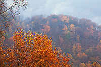 Autumn color and breaking clouds along the North Cumberland ridgelines