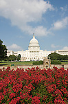 Washington DC; USA: The Capitol Building, legislative branch of the US government, with red flowers.Photo copyright Lee Foster Photo # 3-washdc83030
