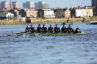 Crew: 13   Molesey (Cassells)   Op Champ<br /> <br /> Quintin Head 2019<br /> <br /> To purchase this photo, or to see pricing information for Prints and Downloads, click the blue 'Add to Cart' button at the top-right of the page.