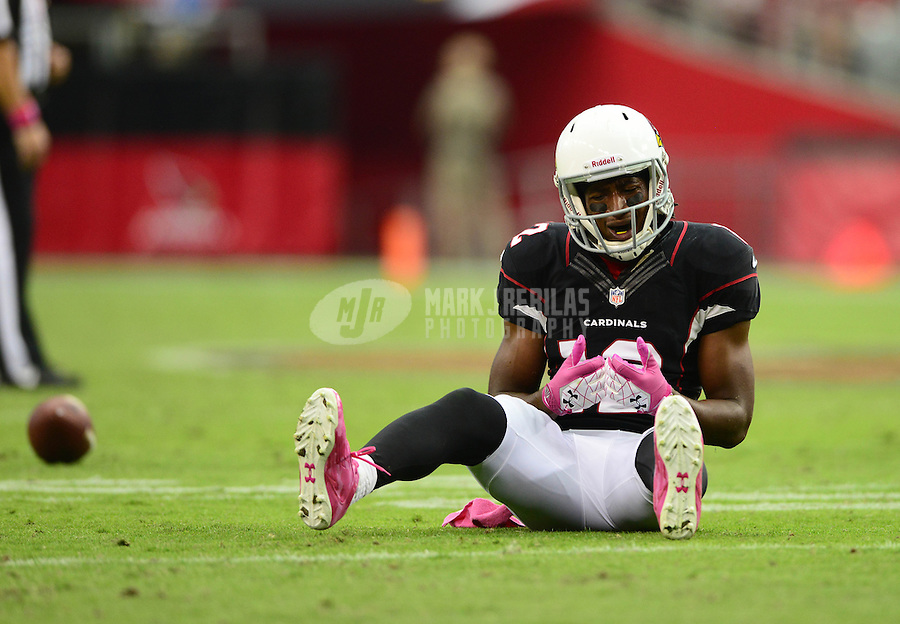 Oct. 14, 2012; Glendale, AZ, USA; Arizona Cardinals wide receiver Andre Roberts reacts to a dropped pass in the second half against the Buffalo Bills at University of Phoenix Stadium. The Bills defeated the Cardinals 19-16 in overtime. Mandatory Credit: Mark J. Rebilas-\