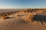South of Lake Eyre National Park