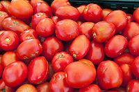 Tomatoes, Red, tomato, Vegetables, Produce, Farmers Market, Fruit,  Farm-fresh produce, fruits,
