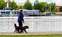 Running off Tux's high energy is a peaceful skate along the Centennial Park waterfront. Jen Frew, of Sarnia, a Lambton College hair stylist student takes in the scenery while running her 18-month-old dog.