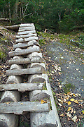 Trail ladder on Israel Ridge Path in the Presidential Range in the New Hampshire White Mountains during the early months of autumn. The Israel Ridge Path was built by J. Rayner Edmands in 1892.