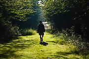 Silhouette of a man walking down path at Bretzfelder Memorial Park in Bethlehem, New Hampshire