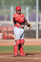 Cincinnati Reds catcher Chadwick Tromp (66) during an Instructional League game against the Los Angeles Dodgers on October 11, 2014 at Goodyear Training Complex in Goodyear, Arizona.  (Mike Janes/Four Seam Images)