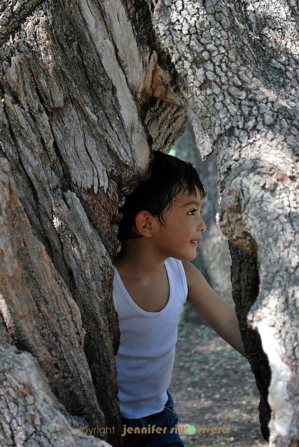 toddler portrait - nature