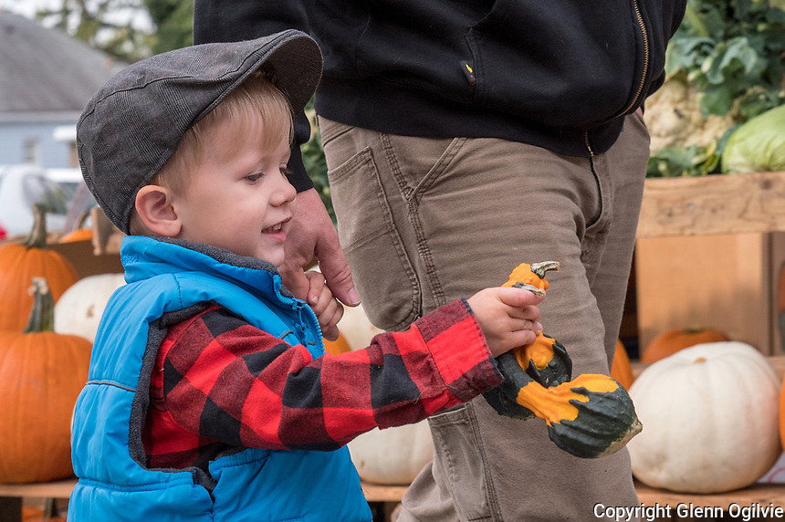 Two-year-old Forest Macumber, son of Samantha and Lance pays a visit to Sarnia Farmers Market.