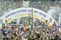 SÃO PAULO,SP, 02.12.2018 - PALMEIRAS-VITÓRIA – Jogadores do Palmeiras comemoram a conquista do Campeonato Brasileiro de 2018, após partida contra o Vitória na Arena Allianz Parque em São Paulo, neste domingo, 02. (Foto: Levi Bianco/Brazil Photo Press)