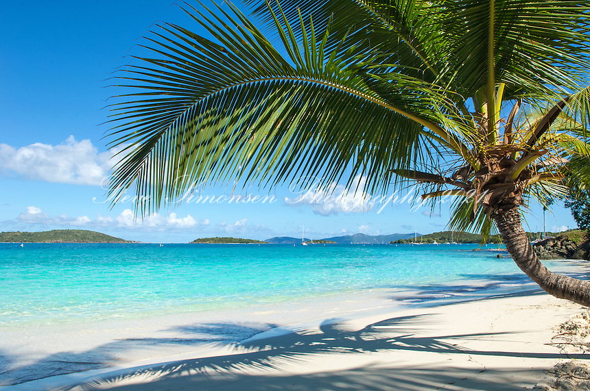Salomon Beach<br />