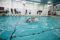 """Alex Penaranda, a senior, pilots his team's boat in Brooklyn Technical High School's Cardboard Boat Regatta in the school's pool in Brooklyn in New York on Friday, March 1, 2013. As part of Engineering Week the teams of students constructed boats made only of cardboard and duct tape. The team's assigned """"captain"""" piloted their boat from one end of the pool to the other and back in a heat with other boats, hopefully without sinking. The surviving boats were timed and the winners received bragging rights with an award also going to the most spectacular sinking. (© Richard B. Levine)"""
