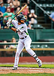 21 July 2019: Vermont Lake Monsters infielder Yerdel Vargas in action against the Tri-City ValleyCats at Centennial Field in Burlington, Vermont. The Lake Monsters rallied to defeat the ValleyCats 6-3 in NY Penn League play. Mandatory Credit: Ed Wolfstein Photo *** RAW (NEF) Image File Available ***