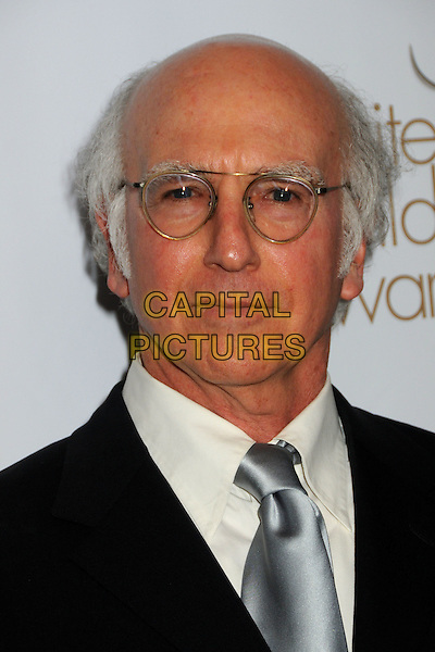 LARRY DAVID .2010 Writers Guild Awards held at the Hyatt Regency Century Plaza Hotel, Century City, California, USA, .20th February 2010..arrivals portrait headshot black glasses silver tie grey gray .CAP/ADM/BP.©Byron Purvis/AdMedia/Capital Pictures.