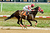Reckless Runner winning at Delaware Park on 7/28/12