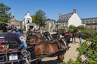 Royaume-Uni, îles Anglo-Normandes, île de Sark (Sercq) : Les Calèches de l'Ile à la Collinette // United Kingdom, Channel Islands, Sark Island (Sercq)