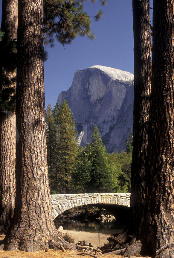 AJ3803, Yosemite, Half Dome, Yosemite National Park, Sierra Nevada Mountains, California, Scenic view of Half Dome from Yosemite Valley in Yosemite Nat'l Park in the state of California.