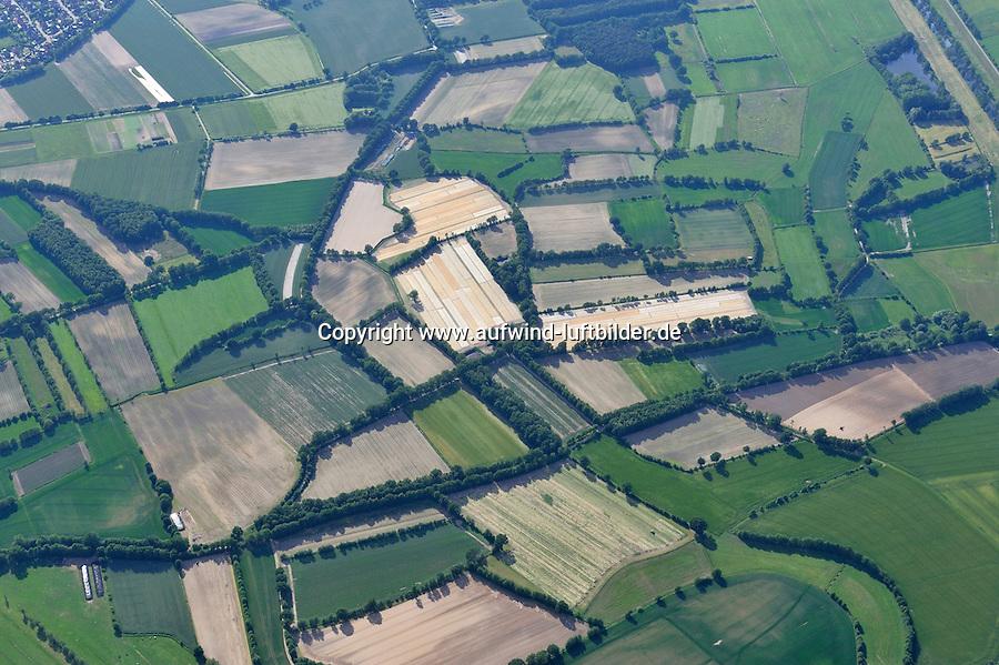 Feldlandschaft: EUROPA, DEUTSCHLAND, NIEDERSACHSEN, (EUROPE, GERMANY), 29.05.2009:  Feldlandschaft bei Lueneburg, Knick, Baum, Reihe, Landschaft, Feld, Acker, Luftbild, Luftansicht, Air, klein, zersiedelt, Landreform, unwirtschaftlich, Aufwind-Luftbilder..c o p y r i g h t : A U F W I N D - L U F T B I L D E R . de.G e r t r u d - B a e u m e r - S t i e g 1 0 2, .2 1 0 3 5 H a m b u r g , G e r m a n y.P h o n e + 4 9 (0) 1 7 1 - 6 8 6 6 0 6 9 .E m a i l H w e i 1 @ a o l . c o m.w w w . a u f w i n d - l u f t b i l d e r . d e.K o n t o : P o s t b a n k H a m b u r g .B l z : 2 0 0 1 0 0 2 0 .K o n t o : 5 8 3 6 5 7 2 0 9.V e r o e f f e n t l i c h u n g  n u r  m i t  H o n o r a r  n a c h M F M, N a m e n s n e n n u n g  u n d B e l e g e x e m p l a r !.