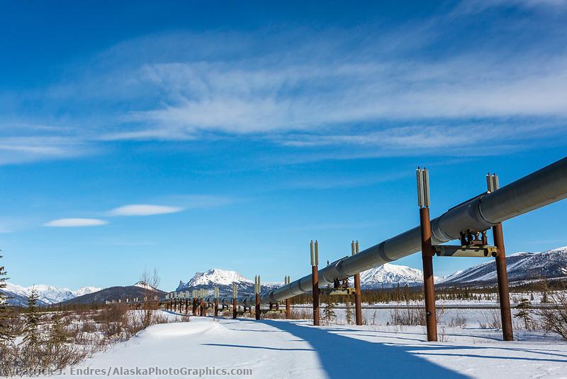 Trans Alaska oil pipeline traverses the tundra in Alaska's Arctic.