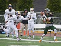 Delaware Valley University defeats Western New England 35-0