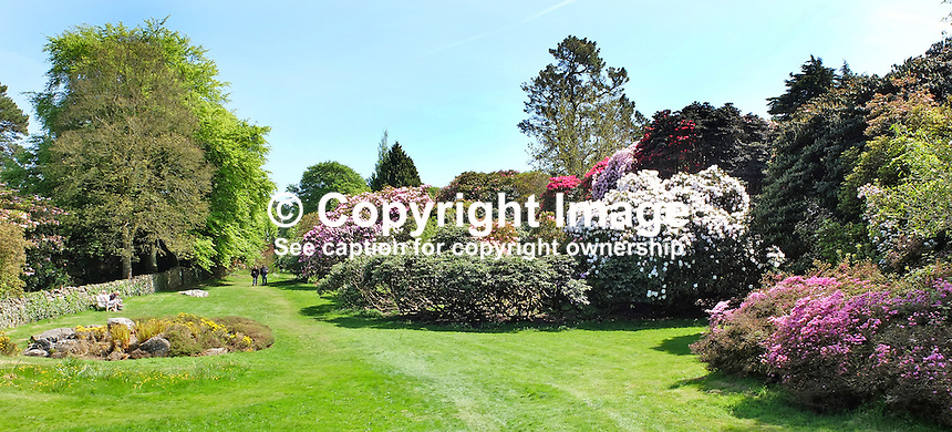 National Trust, Rowallane, Saintfield, N Ireland, UK, parkland, May, 201505231086<br />
