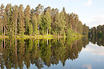 Lake and trees with reflection, Sujonenjoki, nr Kuopio Finland