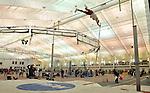 2010 MW DIII Indoor Track