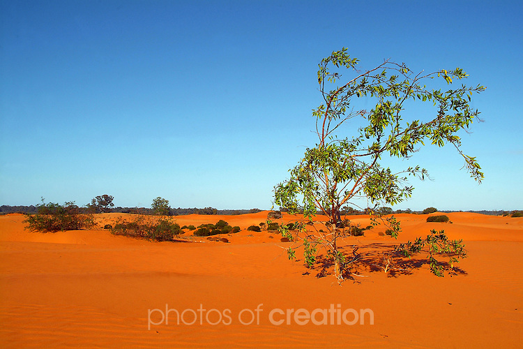 Perry Sand Hills - Wentworth NSW