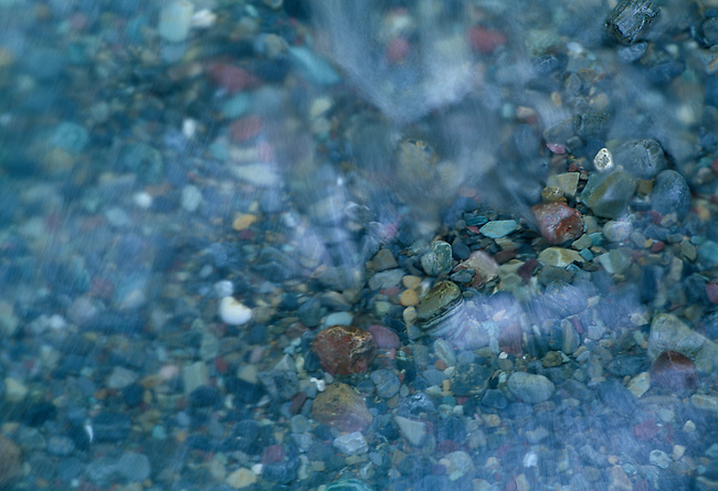 Abstract of creek-bed and flowing water, Avalanche Creek, Glacier Nat'l Park, MT