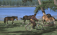 27 JUN 2002 - KHOVSGOL NATIONAL PARK, MONGOLIA - A Mongolian rides a bike past the countries more traditional transport. (PHOTO (C) NIGEL FARROW)
