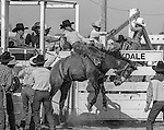 Oakdale, California, April 14, 1984&mdash;Oakdale Rodeo Parade&mdash;Oakdale Saddle Club sponsors  the parade on Saturday morning before the first official rodeo events.<br /> Photo by Al Golub/Golub Photography