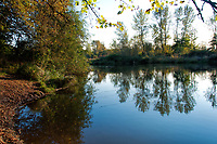 The banks of the Willametter River in the early Fall at Howard Buford County Park (aka Mt. Pisgah Arboretum), outside Eugene, Oregon.