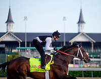 May 1, 2014: Commanding Curve, trained by Dallas Stewart, exercises in preparation for the Kentucky Derby at Churchill Downs in Louisville, KY. Jon Durr/ESW/CSM