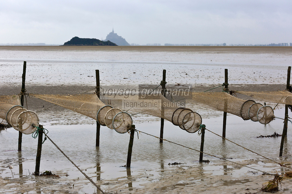 Europe/France/Basse-Normandie/50/Manche/Baie du Mont-Saint-Michel/Genêts: Les filets de Georges Roger Pêcheur de crevettes dans la baie -  Auto N°: A12-3013<br /> // Europe/France/Normandie/Basse-Normandie/ Bay of Mont Saint Michel, listed as World Heritage by UNESCO/ Genets:  Georges Roger Fisher nets of shrimp in the bay