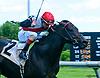 Alphonsus winning at Delaware Park on 6/26/17