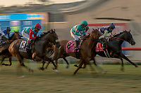 DEL MAR, CA  SEPTEMBER 1: The field of  the John C. Mabee Stakes (Grade ll), on September 1, 2018 at Del Mar Thoroughbred Club in Del Mar, CA.(Photo by Casey Phillips/Eclipse Sportswire/Getty ImagesGetty Images