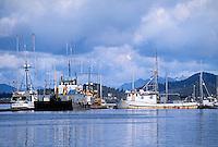 Commercial fishing boats in harbor, Alaska